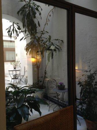 Hotel Amadeus: jardim interno