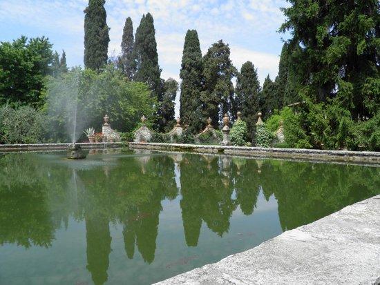 Castello di Verrazzano: The garden of the villa
