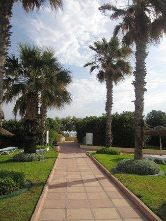 Sahara Beach Aquapark Resort : Palm path to the beach