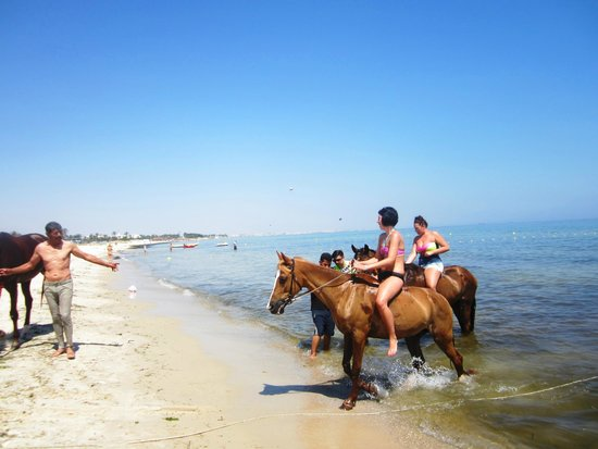 Sahara Beach Aquapark Resort : Swimming with the horse