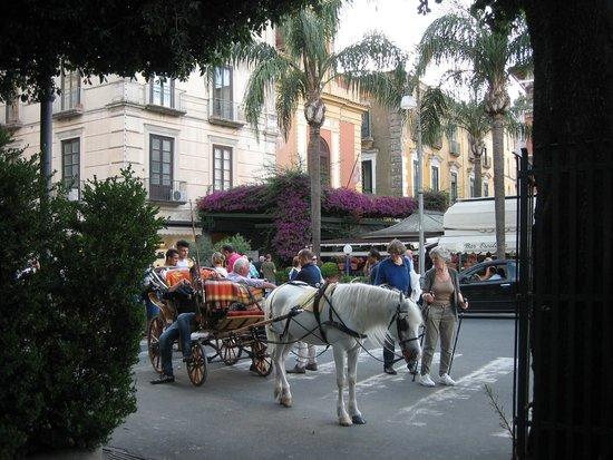 Palazzo Tasso : Tasso Palazzo