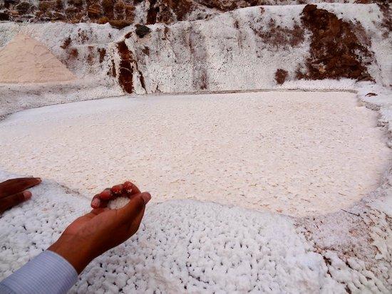 Salinas de Maras: salt