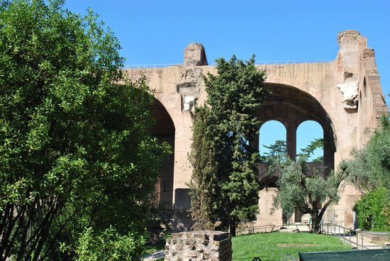 Basilica of Maxentius: the huge Basilica
