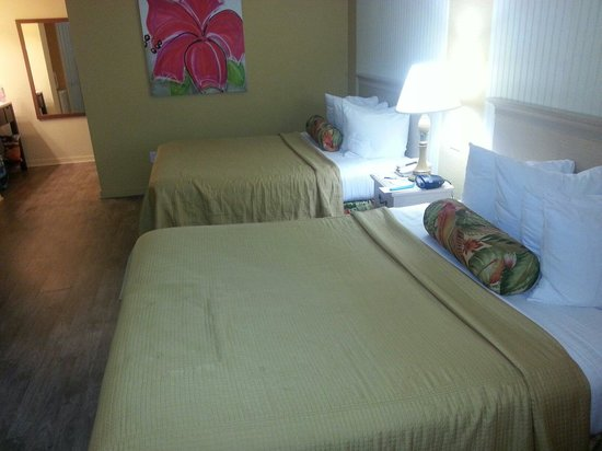 Best Western Hibiscus Motel: beds