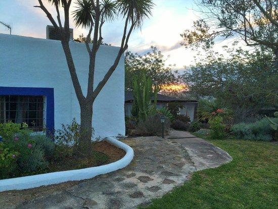 leMarquis Ibiza: Jardines hotel