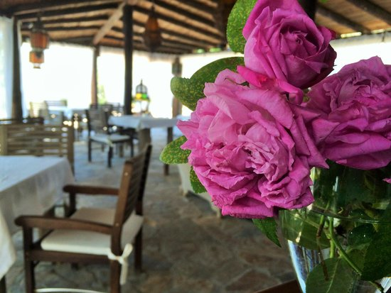 leMarquis Ibiza: Comedor