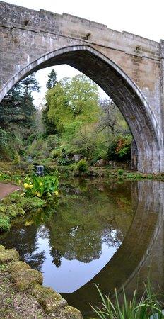 Kildrummy Castle Hotel: Castle gardens