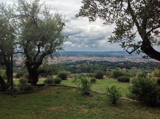 Villa Le Rondini : Passeggiando tra gli ulivi