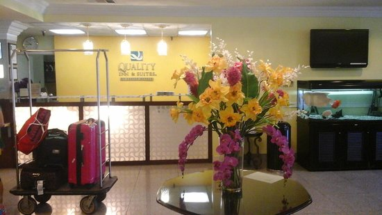 Quality Inn & Suites Montebello: lobby