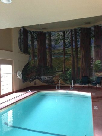 The Redwood Riverwalk Hotel : Mural in the pool area