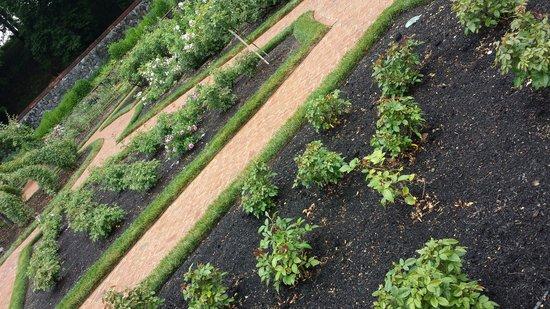 Biltmore Estate: Garden trails.