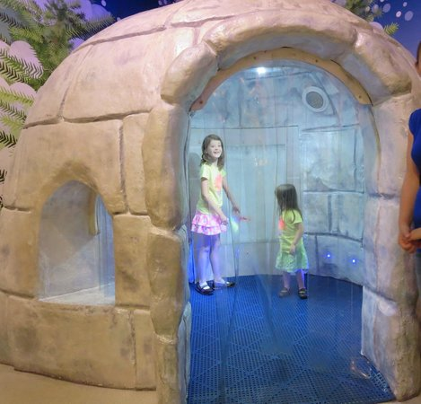Golisano Children's Museum of Naples : icy igloo