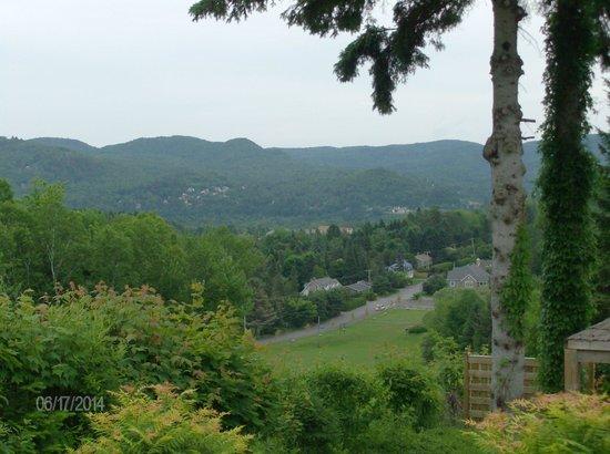 Villa Côté Sud : La vue, en sortant de notre chambre