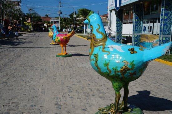 Tourist Information Centre: galinhas simpáticas
