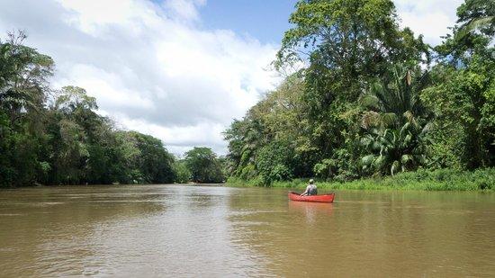 Canoa Aventura: Cano Negro