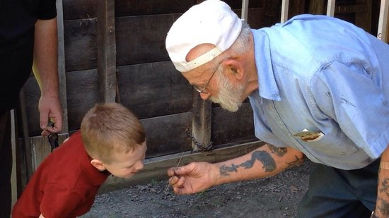 Knight's Spider Web Farm: Mr. Knight showing our 4yo son one of his busy spiders, who almost became a permanent part of a