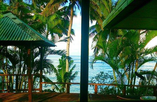 Sinalei Reef Resort & Spa : Ocean View Room