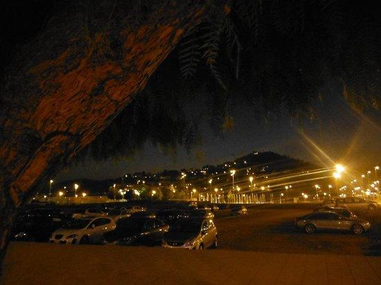 Hotel Indalo Park: Местные виды