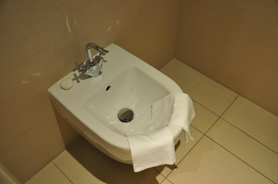 The Ring Hotel: Baño con Videt!!! jaja