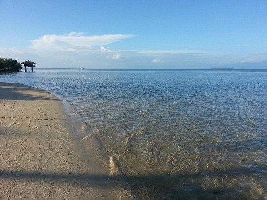 Dos Palmas Island Resort & Spa: Pristine beach