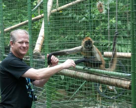 Proyecto Asis: Holding hands with a spider monkey