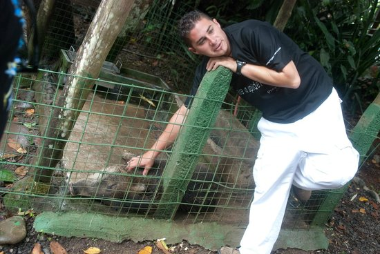 Proyecto Asis: Our guide with a wild boar