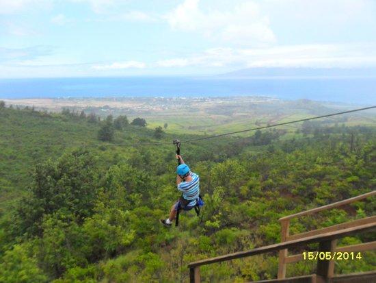 Skyline Eco Adventure : Zipline freedom...