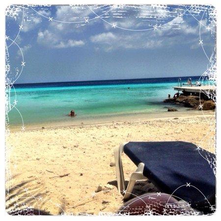 Playa Porto Marie: View