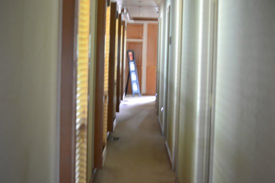 Sea Suites Boat & Breakfast : hallway to the living quarters