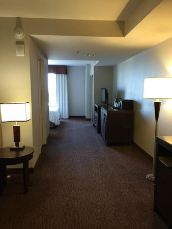 Hilton Garden Inn Toledo Perrysburg: View of Room from Entrance