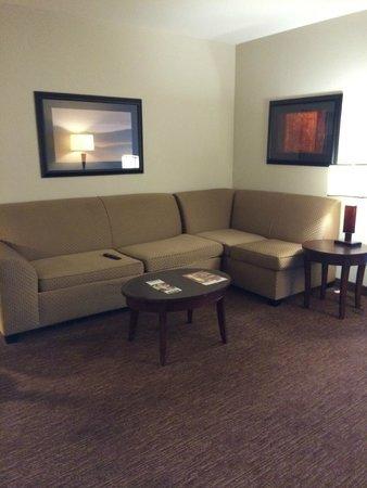 Hilton Garden Inn Toledo Perrysburg: Pull-Out Sofa