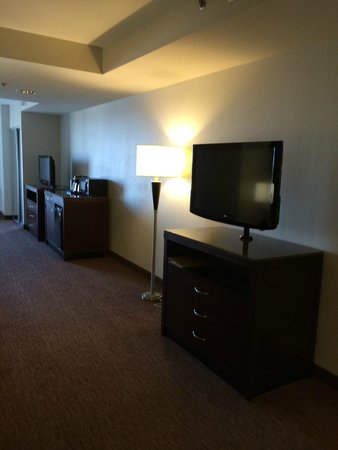 Hilton Garden Inn Toledo Perrysburg : TV for Sitting Area