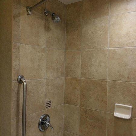 Hilton Garden Inn Toledo Perrysburg: Shower