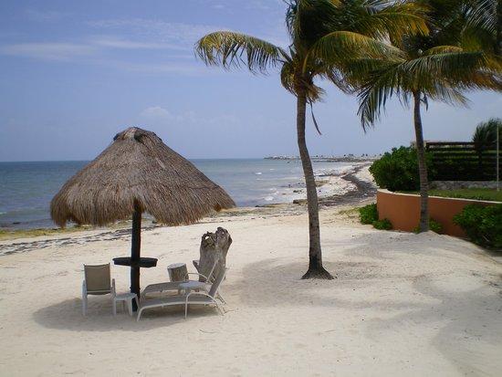 Caribbean Reef Villas : Relax on the beach
