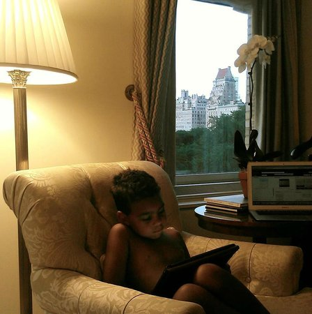 The Ritz-Carlton New York, Central Park: Room with view to central park
