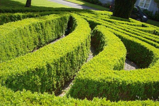 Dromoland Castle Hotel: Front landscaping