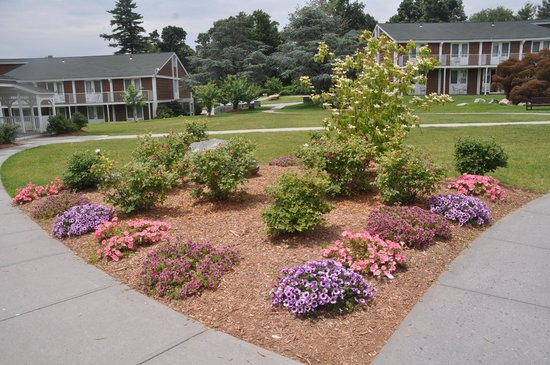 Doubletree by Hilton Hotel Tarrytown: Flowers at the intersection of sidewalks in back lawn