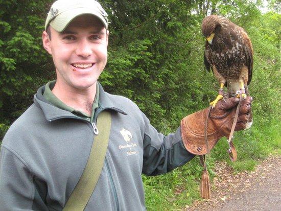 Dromoland Castle Hotel: Jim our falcon guy!