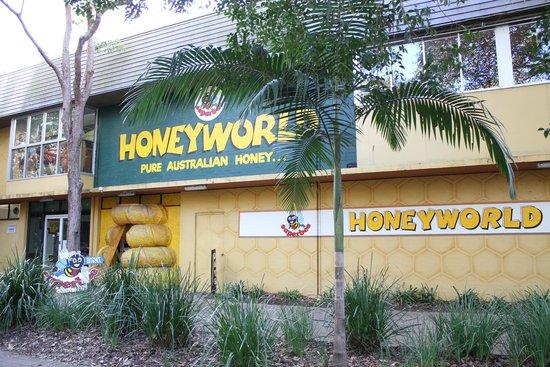 Superbee Honeyworld: Welcome to Honeyworld!