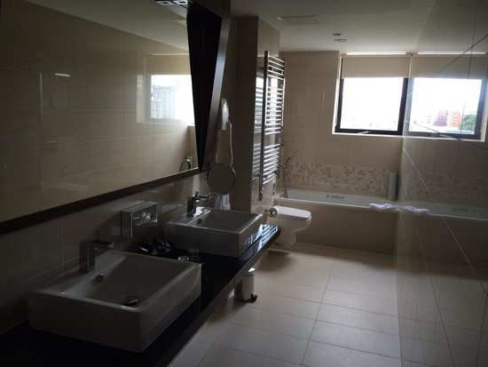 Ashling Hotel: Bathroom. Shower is behind me and it's also very spacious, modern and clean :)