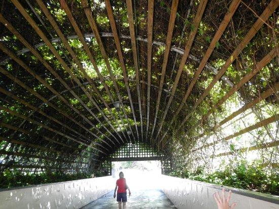 Jardines Busch: Grounds