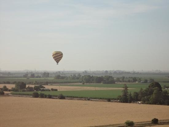 Balloons Above the Valley: View of the other balloon that went out with us.