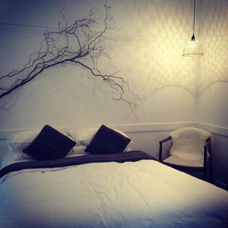 Biota Rooms