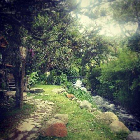 Hostal Garden by Refugio del Rio: Gardens