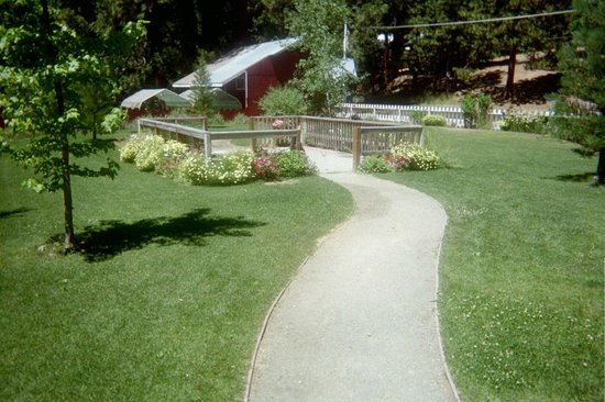 Long Barn Lodge: Path leading to Swimming Pool