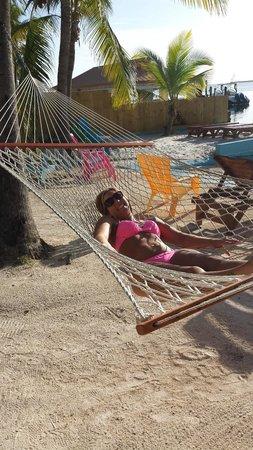 Seafarer Resort and Beach : Enjoy the hammocks in the sun!
