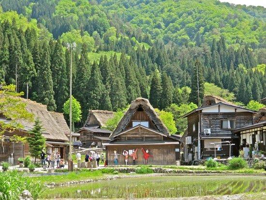 Twin houses - Foto di Shirakawago Gassho Zukuri Minkaen, Shirakawa-mura - Tri...