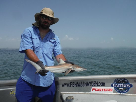 Shark fishing charters sanibel captiva fort myers cape for Cape coral fishing charters