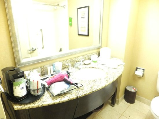 Hampton Inn Fort Lauderdale Airport North Cruise Port : Bathroom