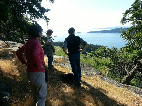 Saturna Lodge: Thirty minute hike from the lodge, this cliff top view of the Island's vineyard